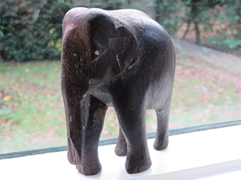 The elephant given to Michiel by the Gulf of Bengal