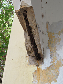 Leadbeater Chambers rust, leakage and rising damp 1