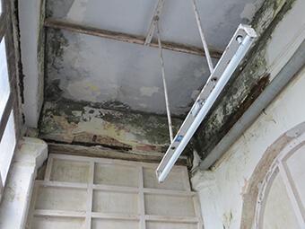 Leakage, termites and rising damp 2