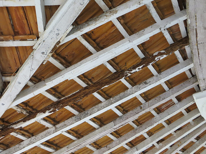 Necessary and urgent repair of the beams